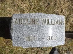 Adeline Fitch Williams (1819-1903) - Find A Grave Memorial