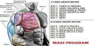 bodybuilding workout routines 10 tips