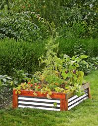 why you need a raised garden bed