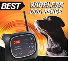 Best Wireless Dog Fence Lets Your Pets Enjoy Your Yard Wirelessly Chairs Lifestyle