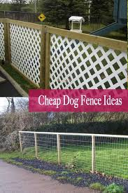 Cheap Dog Fence Ideas And Inspiration Cheapdogfence Dogfence Diydogfence When Mulling Over Backyard Fencing Ide In 2020 Dog Fence Dog Fence Cheap Dog Yard Fence