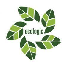 Стратегічна екологічна оцінка (СЕО)