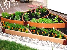 home vegetable garden ideas homsgarden
