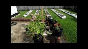 green organic gardening part 5
