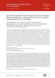 PDF) New World geometrid moths (Lepidoptera: Geometridae): Molecular  phylogeny, biogeography, taxonomic updates and description of 11 new tribes