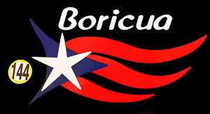 Puerto Rico Car Decal Sticker Boricua With Flag 144 Ebay