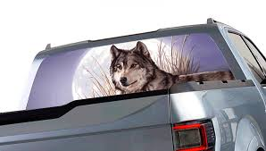 Window Canvas Wildlife Window Graphic Free Shipping
