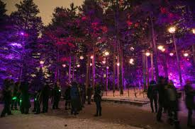 Illumination: Tree Lights at The Morton Arboretum | The Morton Arboretum