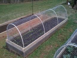 pin on garden beds raised
