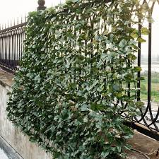 Goplus 59 X95 Faux Ivy Leaf Decorative Privacy Fence Screen Artificial Hedge Modern Design In 2020 Artificial Hedges Privacy Fence Screen Fence Screening