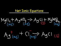 net ionic equation worksheet and