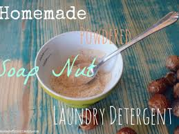 homemade powder soap nuts laundry detergent