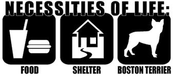 Necessities Of Life Food Shelter Boston Terrier Vinyl Decal