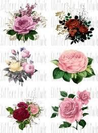 6 Watercolor Roses Flower Waterslide Decals For Tumblers Sealed Set 40 Ebay