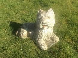 west highland terrier westie garden