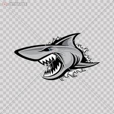 Decal Stickers Shark Doors Helmet Truck Buy Online In Jamaica At Desertcart