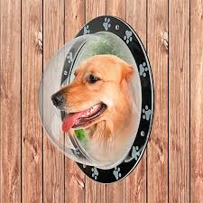 Amazon Com Pupteck Pet Fence Window Acrylic Clear Dome View Dog Bubble Window Cat Dome Safe Pet Peek Window Large Size For Dog Cat Pets Pupteck Pet Supplies