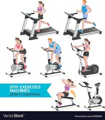 gym exercises machines sports equipment