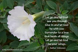 spiritual quote datura metel our daily blossom