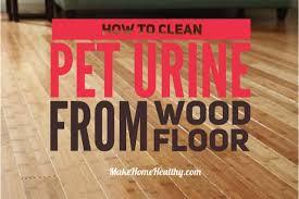 pet urine from my wood floor