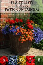 container gardening for beginners pdf