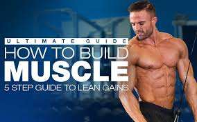 how to build muscle workouts t
