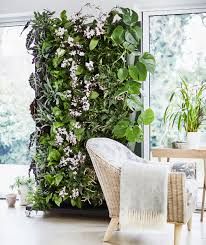 how to make a living plant wall ideal