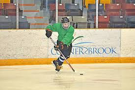 Goose Cove's Adrian Ward plans on using speed to compensate for size with  Yarmouth Mariners | Hockey | Sports | The Telegram