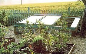 greenhouses why polycarbonate beats