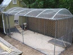 How High Should My Chicken Run Fence Be Backyard Chickens Learn How To Raise Chickens