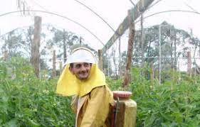 Fomenta Sader eliminación gradual de agroquímicos