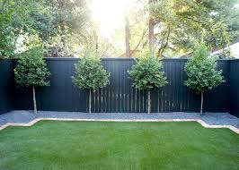 A Row Of Evenly Spaced Eagleston Hollies Line The Back Fence And Will Grow To Privacy Landscaping Backyard Landscaping Along Fence Backyard Landscaping Designs