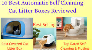 Best Self Cleaning Automatic Cat Litter Box Reviews 2020