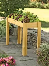 elevated salad bar garden cedar salad