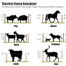 China Electric Fencing Pp Insulator Sheep Fence Cattle Fence Ranch Fence For Livestock China Electric Fence Energizer Electric Fencing Controller