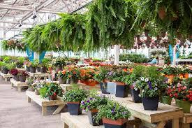 peti garden centers home garden