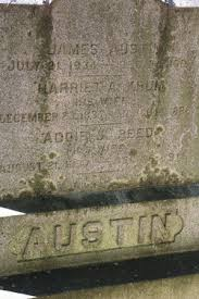 "Adeline S. ""Addie"" Reed Austin (1837-1915) - Find A Grave Memorial"