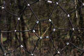 Free Images Branch Rope Light Fence Barbed Wire Play Sunlight Leaf Child Material Twig Spider Web Fun Playground By Looking Kletterger St Outdoor Structure Chain Link Fencing Wire Fencing Home Fencing