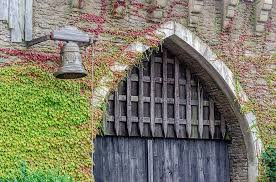 castle, door, portal, ivy, bell, old, metal, entry, building, fortress,  architecture   Pikist
