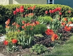 month bulb garden design autoiq co