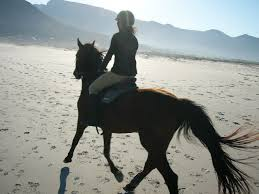 horse riding adventures as gifts for
