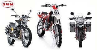 swm bikes nepal enduro 300 silver