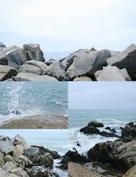 venice beach california by saxon