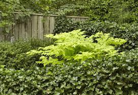 Secrets Of A Small Garden