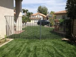 Protect Your Yard From Rattlesnakes Tips For Snake Proofing Tjs Garden