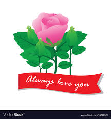 you with rose royalty free vector image