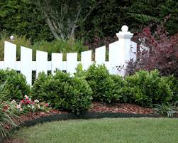 texas gardening revamp landscaping