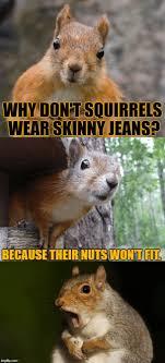 New Squirrel Nuts Meme Memes Bust Memes Deez Nuts Memes
