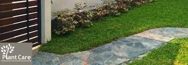 plant care landscaping plantation