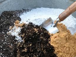 homemade potting soil for cacti world